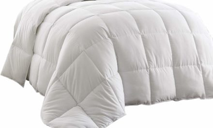 Chezmoi Collection White Goose Down Alternative Comforter Review