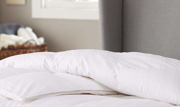 Hypoallergenic Goose Down Comforter Review 2019